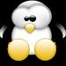 Pingouin 2.0 : chronique d'une mise à jour Low Cost